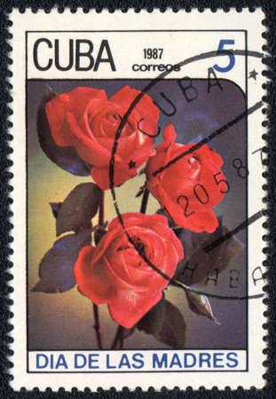CUBA - CIRCA 1987: A stamp printed in CUBA shows  Rose Rose, circa 1987 photo