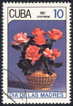 CUBA - CIRCA 1987: A stamp printed in CUBA shows a Bouquet of roses , circa 1987 photo