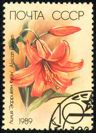 USSR - CIRCA 1989: A Stamp printed in USSR shows image of a  African Queen; from the series Lilys, circa 1989  photo