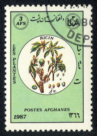 AFGANISTAN - CIRCA 1987: A stamp printed in AFGANISTAN shows image of a   Ricin, herb series, circa 1987  photo