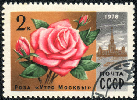 USSR - CIRCA 1978: A stamp printed in USSR  shows  a rose The morning of Moscow and building, series, circa 1978 photo
