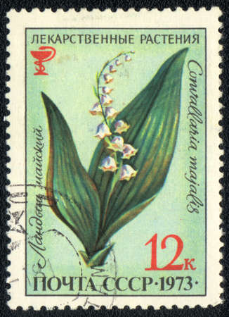 USSR - CIRCA 1973: A stamp printed in USSR  shows  a  Convallaria majalis, herb series, circa 1973 photo