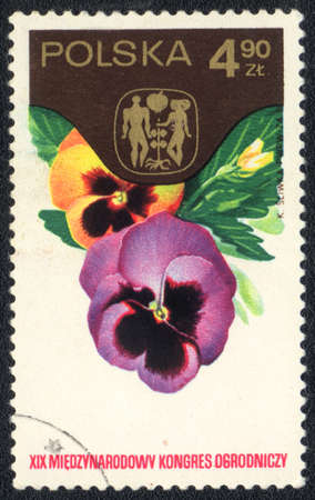 POLAND - CIRCA 1974: A stamp printed in POLAND  shows  a Viola tricolor, series,XIX International congress of truck farming, circa 1974 photo