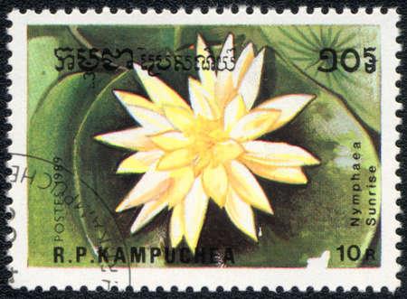 Kampuchea - CIRCA 1989: A stamp printed in Kampuchea  shows  a Nymphaea Sunrise, series Water lily, circa 1989 photo