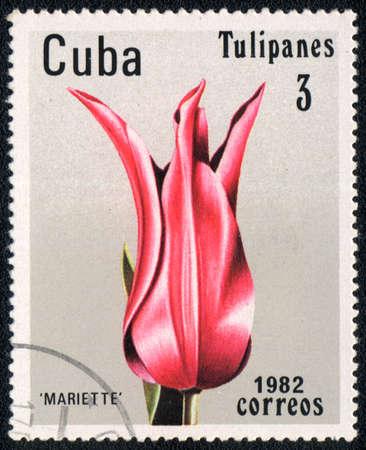 CUBA - CIRCA 1982: A stamp printed in CUBA  shows  a Mariette, series
