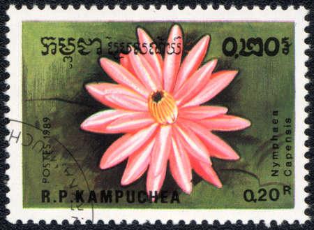 Kampuchea - CIRCA 1989: A stamp printed in Kampuchea  shows  a Nymphaea , series Water lily, circa 1989 photo