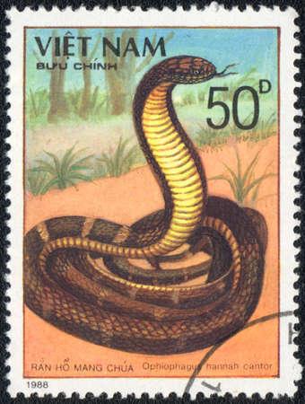 VIETNAM - CIRCA 1988: A stamp printed in VIETNAM  shows  a King Cobra - Ophiophagus hannah cantor, series, circa 1988 photo