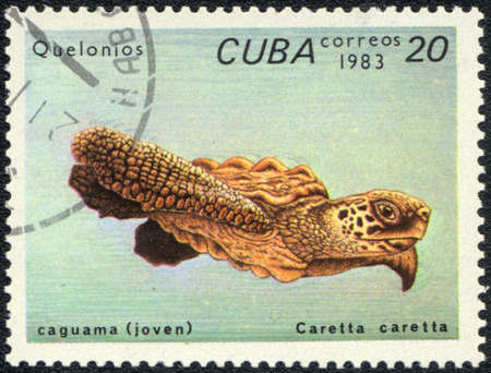 CUBA - CIRCA 1983: A stamp printed in CUBA  shows  a Loggerhead sea turtle - caguama (joven), series Quelonios, circa 1983 photo