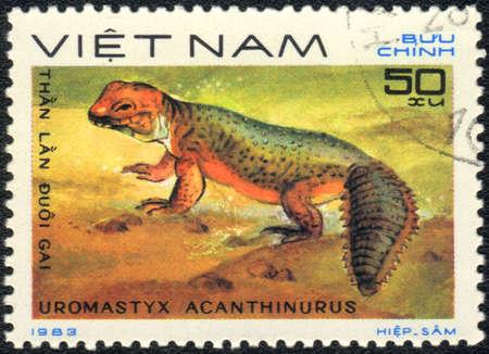 amphibia: VIETNAM - CIRCA 1983: A stamp printed in VIETNAM  shows  a Uromastyx acanthinurus, series, circa 1983 Stock Photo
