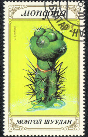 MONGOLIA - CIRCA 1989: A stamp printed in MONGOLIA  shows  a Straucii, series