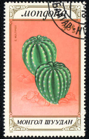 MONGOLIA - CIRCA 1989: A stamp printed in MONGOLIA  shows  a Echinopsis Oxygona, series