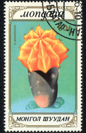 MONGOLIA - CIRCA 1989: A stamp printed in MONGOLIA  shows  a Gymnocalycium Mihanovichii, series
