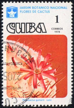 CUBA - CIRCA 1978: A stamp printed in CUBA  shows  a cactus - Melocactus guitartii, series