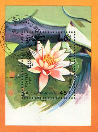 KAMPUCHEA - CIRCA 1989: A stamp printed in KAMPUCHEA  shows  a  Nymphaea   Paul Hariot, circa 1989 Stock Photo - 11028087