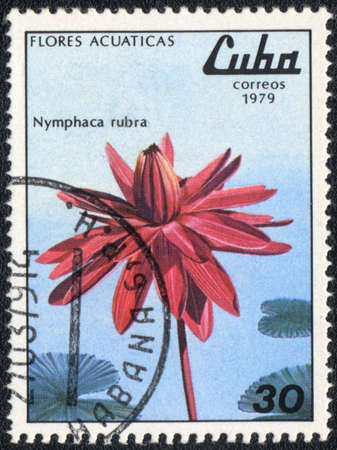 CUBA - CIRCA 1979: A stamp printed in CUBA  shows  a  Nymphaea rubra, series