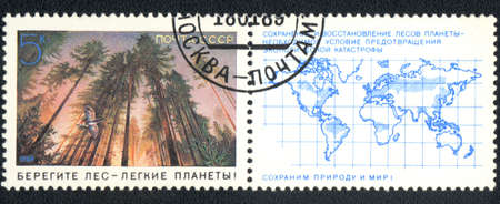 USSR - CIRCA 1989: A stamp printed in USSR  shows  a forest, series  Preserve nature and the world!, circa 1989   photo