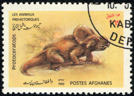 AFGHANISTAN - CIRCA 1988: A stamp printed in AFGHANISTAN shows Protoceratops, series, circa 1988 photo