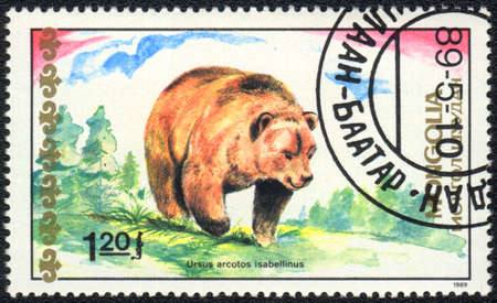 MONGOLIA - CIRCA 1989: A Stamp printed in MONGOLIA shows Himalayan Brown Bear,  Bears series, circa 1989  photo