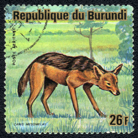 REPUBLIC OF BURUNDI - CIRCA 1989: A stamp printed in REPUBLIC OF BURUNDI shows black-backed jackal (Canis mesomelas), series, circa 1989 photo