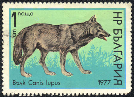 BULGARIA - CIRCA 1977: A stamp printed in BULGARIA shows anis lupus, circa 1977 photo