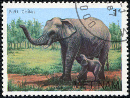 VIETNAM - CIRCA 1986: A stamp printed in VIETNAM shows  Female elephant with elephant-calf, Asian elephant series, circa 1986 photo