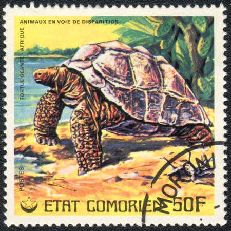 comores: COMOROS - CIRCA 1980: A stamp printed in COMOROS shows  a African giant Turtle, series, circa 1980