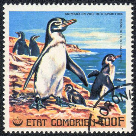 comores: COMOROS - CIRCA 1980: A stamp printed in COMOROS shows  Galapagos  penguin, series, circa 1980