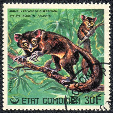 comores: COMOROS - CIRCA 1980: A stamp printed in COMOROS shows  a Aya-aya lemures, series, circa 1980 Stock Photo