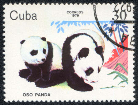 CUBA - CIRCA 1979  A stamp printed in CUBA shows  a Panda cubs, baby animals series, circa 1979 photo