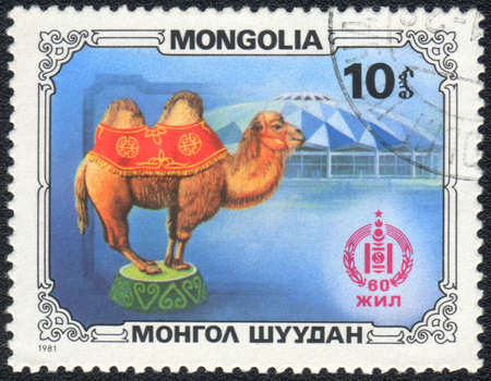 camel post: MONGOLIA - CIRCA 1981: A stamp printed in MONGOLIA shows  a circus camel, circus series, circa 1981