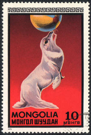MONGOLIA - CIRCA 1973: A stamp printed in MONGOLIA shows a Seal in a circus, circus series, circa 1973 photo