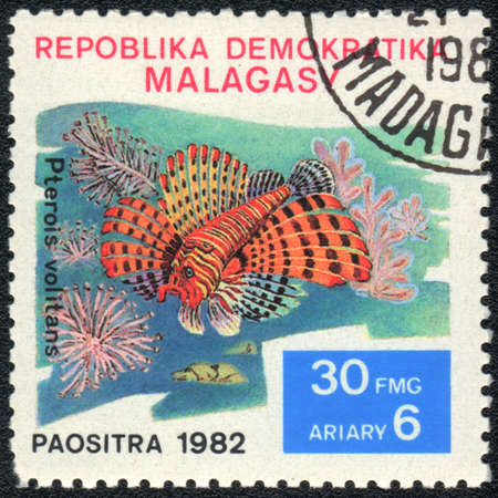 pterois volitans: REPUBLIC MALAGASY - CIRCA 1982  A Stamp printed in REPUBLIC MALAGASY  shows a Pterois volitans,  series, circa 1982  Stock Photo