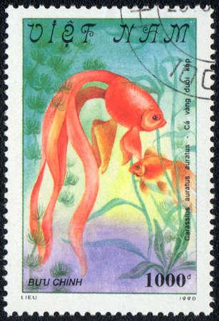 VIETNAM - CIRCA 1982  A Stamp printed in VIETNAM shows a  Carassius auratus auratus,  series  Goldfish , circa 1982 Stock Photo - 13495738