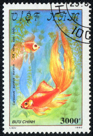 VIETNAM - CIRCA 1982  A Stamp printed in VIETNAM shows a  Carassius auratus auratus,  series  Goldfish , circa 1982 Stock Photo - 13495742