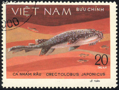 VIETNAM - CIRCA 1980  A Stamp printed in VIETNAM shows a Orectolobus japonicus,  series, circa 1980  photo