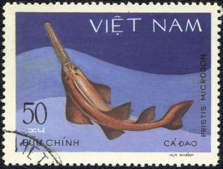 VIETNAM - CIRCA 1980: A Stamp printed in VIETNAM shows a  Pristis microdon,  series , circa 1980 Stock Photo - 13495730