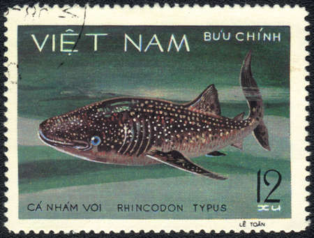 VIETNAM - CIRCA 1980: A Stamp printed in VIETNAM shows a  Rhincodon typus,  series, circa 1980  photo