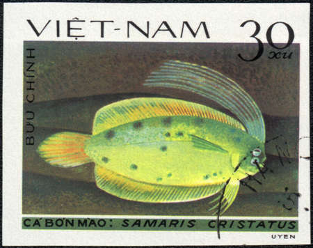 VIETNAM - CIRCA 1982: A Stamp printed in VIETNAM shows a Samaris cristatus,  series