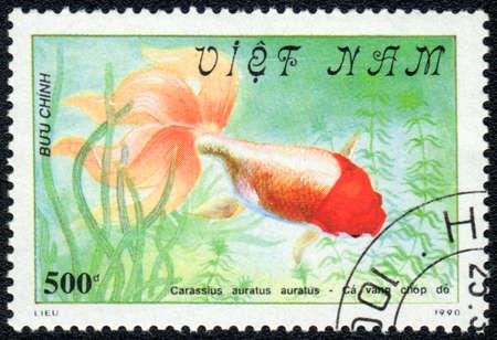 VIETNAM - CIRCA 1982: A Stamp printed in VIETNAM shows a  Carassius auratus auratus,  series