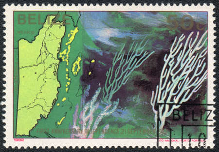 BELIZE - CIRCA 1982  A Stamp printed in BELIZE  shows a Bent sea rod  Plexaura flexuosa  ,  series First anniversary independence 21 september 1982  Sea fauna and flora , circa 1982 photo