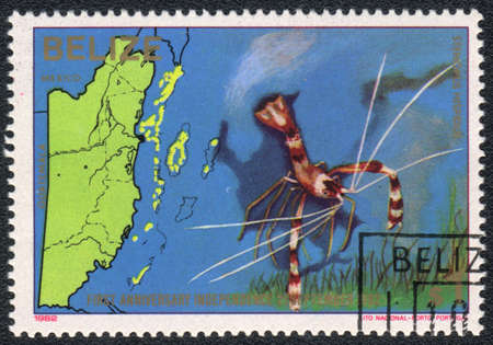 BELIZE - CIRCA 1982  A Stamp printed in BELIZE  shows a Boxer Shrimp  Stenopus hispidus ,  series First anniversary independence 21 september 1982  Sea fauna and flora , circa 1982