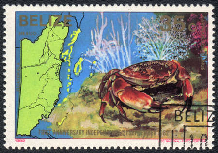 BELIZE - CIRCA 1982  A Stamp printed in BELIZE  shows a Crab  Carpilius corallinus ,  series First anniversary independence 21 september 1982  Sea fauna and flora , circa 1982
