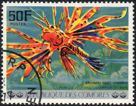 pterois volitans: COMOROS - CIRCA 1977: A stamp printed in COMOROS shows  a Red lionfish (Pterois volitans), series Tropical Fishes, circa 1977