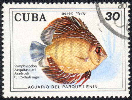 CUBA - CIRCA 1978: A Stamp printed in CUBA shows a Discus (Symphysodon Aequifasciata Axelrodi),  series Aquarium of Lenin Park, circa 1978 photo