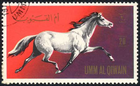 umm: UMM AL QIWAIN - CIRCA 1971: A stamp printed in UMM AL QIWAIN  shows a dappled gray horse from series: Horses, circa 1971