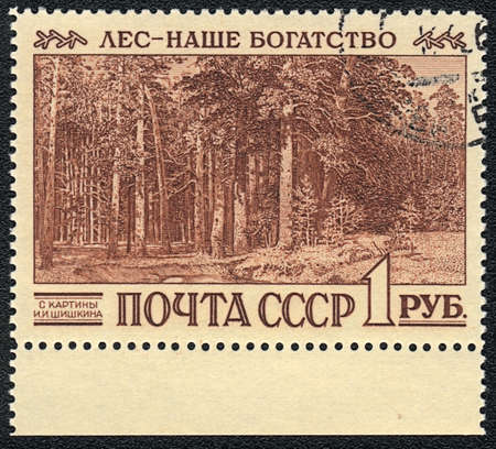 USSR - CIRCA 1990: A Stamp printed in USSR shows a painting by Shishkin and inscription