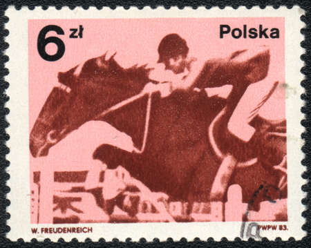 POLAND - CIRCA 1983: A stamp printed in POLAND  shows a Show jumping, circa 1983 photo