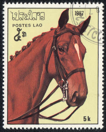 VIETNAM - CIRCA 1987: A stamp printed in VIETNAM  shows a red horse from series: Horses, circa 1987 Stock Photo - 13639988