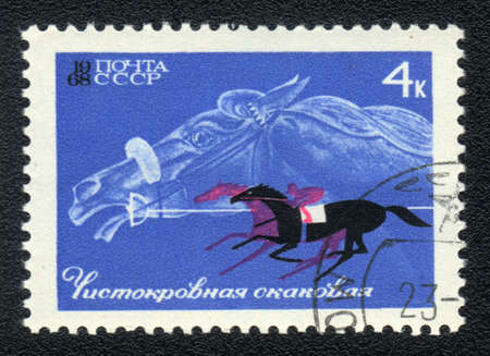 USSR - CIRCA 1968: A stamp printed in USSR shows  a Thoroughbred race horse, series horse breed in a equestrian sport, circa 1968 Stock Photo - 13656187