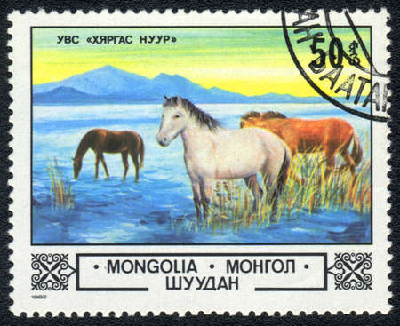 MONGOLIA - CIRCA 1982: A stamp printed in MONGOLIA  shows  a watering place for horses , series, circa 1982 Stock Photo - 13656741